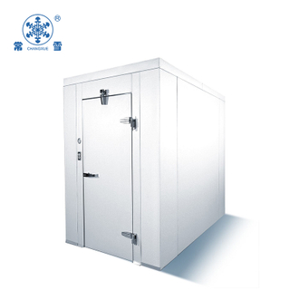 15CBM Small Blast Freezer for Fresh Seafood